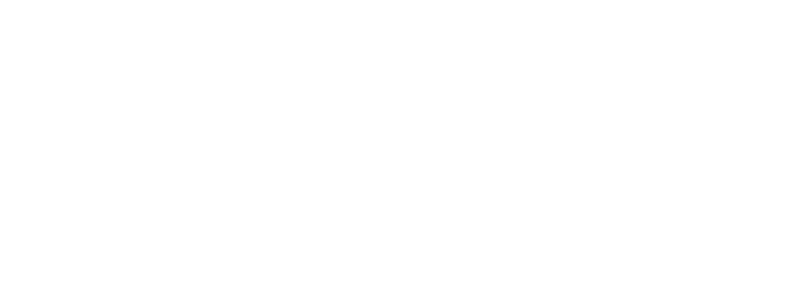 AllianceSecurityServices-White-01.png